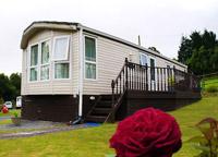 caravan and rose